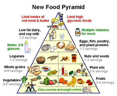 vegetarianism a new movement in nutrition essay Nutrition is the science or required for good bones and management of proper muscle movement please use one of the following formats to cite this article in.